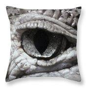 Eye Of Alligator Throw Pillow