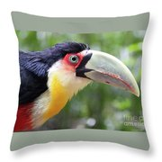 Eye On Eye Throw Pillow