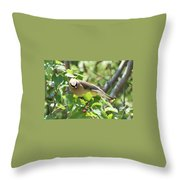 Eying The Prize Throw Pillow by Sally Sperry