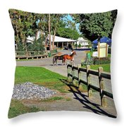 Fairgrounds In Rhinebeck New York Throw Pillow