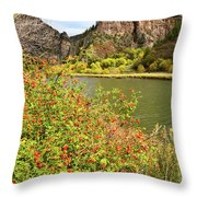Fall Along Colorado River In Glenwood Canyon Throw Pillow by Ray Mathis