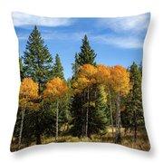 Fall Aspen Throw Pillow by Michael Chatt
