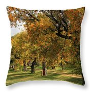 Fall Ave Throw Pillow