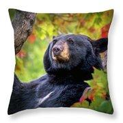 Fall Black Bear Throw Pillow