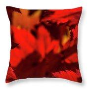 Fall Coffee Mug Throw Pillow