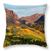 Fall Colors On The North Face Of Pikes Peak Throw Pillow