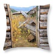Fall Door 2 Throw Pillow