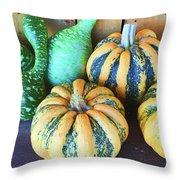Fall Harvest Throw Pillow