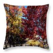 Fall In Wenatchee Throw Pillow