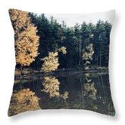 Fall Mirrors 2 Throw Pillow