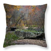 Fall On The Kings River Throw Pillow