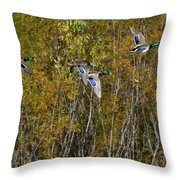 Fall Time Mallards Throw Pillow