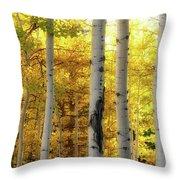Fall's Visitation Throw Pillow by Rick Furmanek