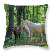 Family Of Horses Throw Pillow