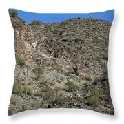 Family Of Saguaro Throw Pillow