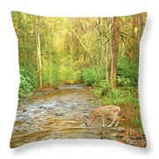 Fawn Drinking From Stream Throw Pillow