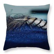 Feather Throw Pillow by Ann E Robson
