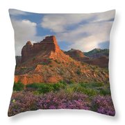 Feather Dalea, Caprock Canyons State Throw Pillow