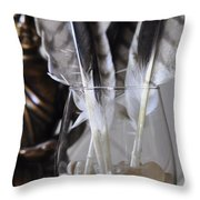 Feathers 3 Throw Pillow
