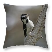 Female Downy Woodpecker Throw Pillow