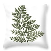 Fern Twig Illustration Grey Plant Watercolor Painting Throw Pillow