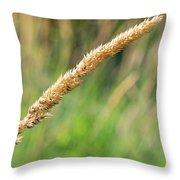 Field Grass Throw Pillow