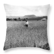 Field Of Wheat Campbell S Plains  Darling Downs Throw Pillow