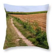 Field With Brown Cut Flax In Rows Drying In The Sun Throw Pillow