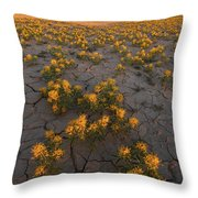 Fields Of Gold Throw Pillow by Dustin LeFevre