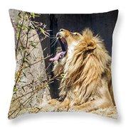 Fierce Yawn Throw Pillow by Kate Brown