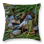 First Frost In Sweden Throw Pillow