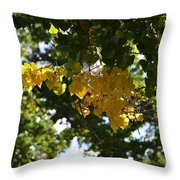 First Golden Leaves Throw Pillow
