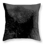 Fish And Smoke Part2 Throw Pillow