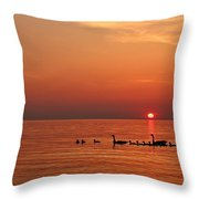 Fishy Geese Sunset Throw Pillow