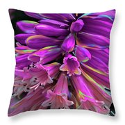 Flamingo Throw Pillow by Cindy Greenstein