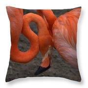 Flamingo Couple Throw Pillow