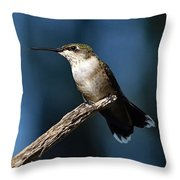 Flick Of The Tongue - Ruby-throated Hummingbird Throw Pillow