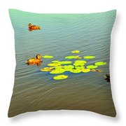 Floating Ducks Throw Pillow