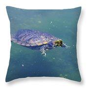 Floating Turtle Throw Pillow