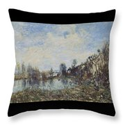 Flooded  Field Throw Pillow