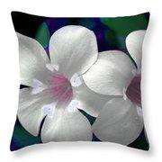Floral Photo A030119 Throw Pillow by Mas Art Studio
