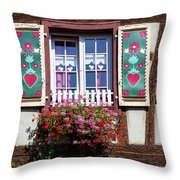 Flowered Window - 6 Throw Pillow