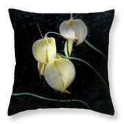 Flowerography Throw Pillow