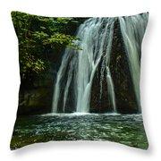 Flowing Falls  Throw Pillow
