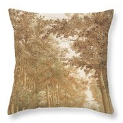 Forest Road Wi  Throw Pillow