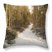 Forest Track In Winter Throw Pillow