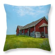 Forgotten 1 Throw Pillow