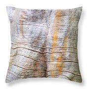 Foster Trees 4 Throw Pillow