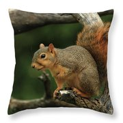 Foxy-4 Throw Pillow