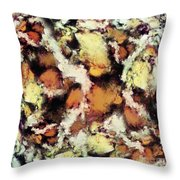 Fractured Viewpoint Throw Pillow